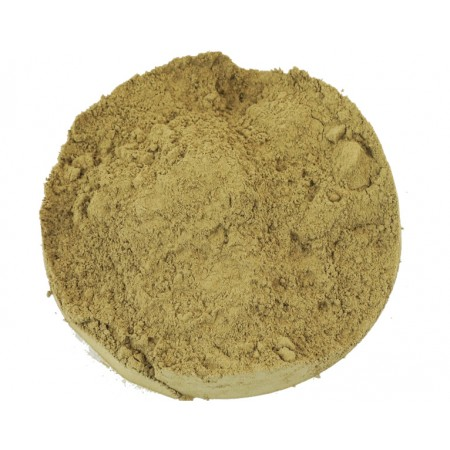 Neem mielony - Miodla indyjska